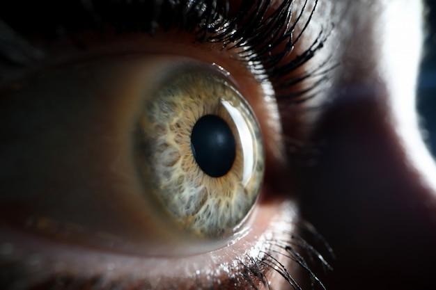 Human green eye supermacro closeup background