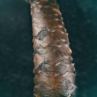 현미경으로 인간의 머리카락, 건강한 인간의 머리카락 클로즈업의 구조를 보여주는 3d 그림