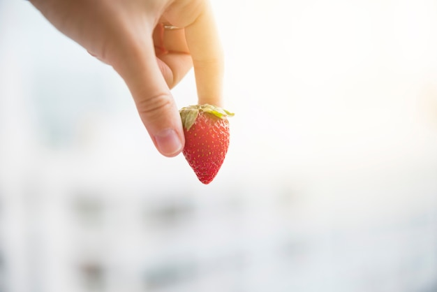 Human hand holding red whole organic strawberry over blurred background