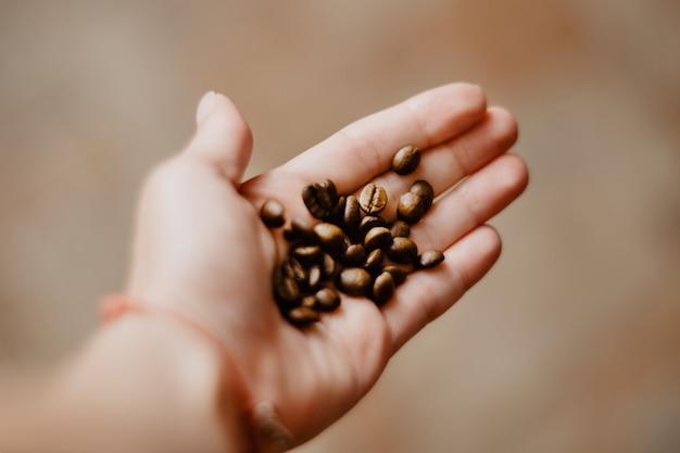 人間の手はコーヒー豆を保持