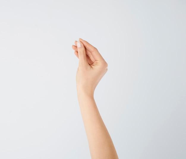 分離された人間の手