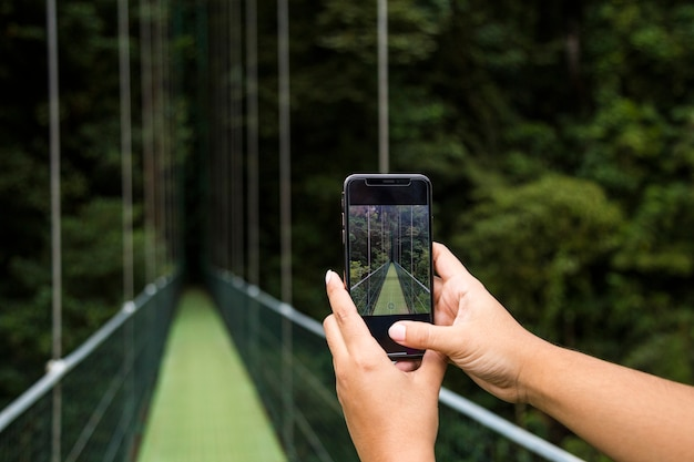 Human hand taking picture of suspension bridge on cellphone in rainforest at costa rica