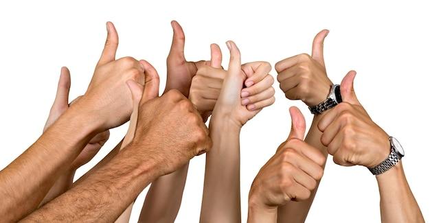 親指を身振りで示す人間の手は白で隔離