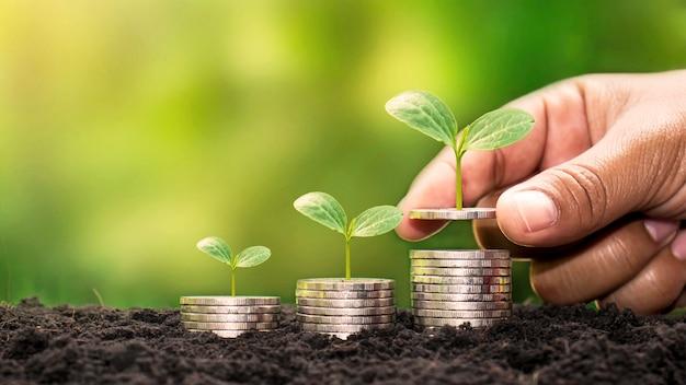 お金を持っている人間の手と成長している植物