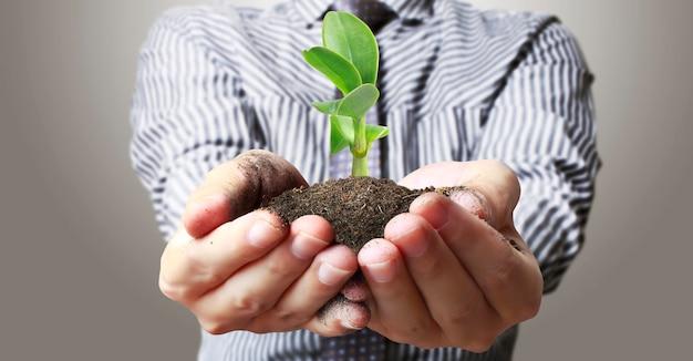 인간의 손에 새싹 젊은 plant.environment 지구의 날을 들고 묘목을 자라는 나무의 손에
