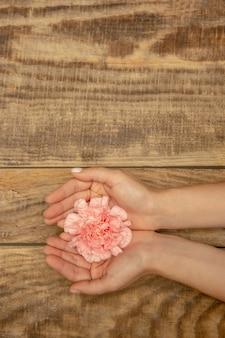 コピースペースと木製の背景に分離された柔らかい夏の花を一緒に保持している人間の手。春の気分、健康、健康的なライフスタイル、ロマンチック、自然、有機的なコンセプト。スパ、サポート、美しさ。