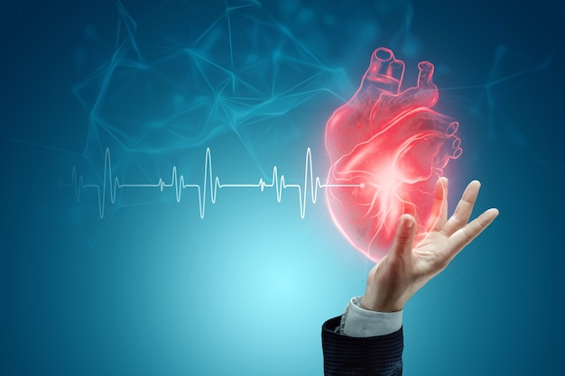 Human heart hologram in hand and cardiogram line