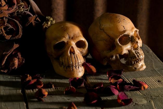 Человеческий череп и сухие цветы на фоне старого дерева; натюрморт