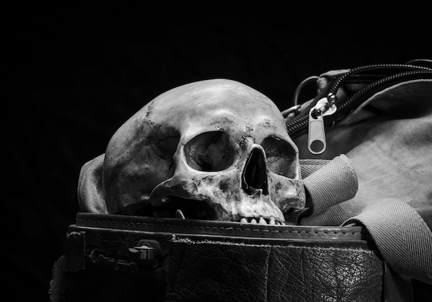 Human skull are placed in old leather box in black and white