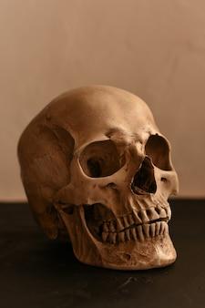 Human skull on a black