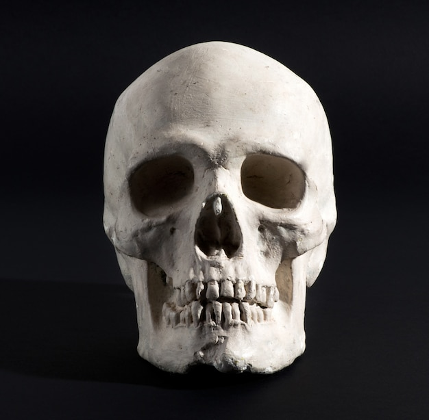 Человеческий череп на черном фоне