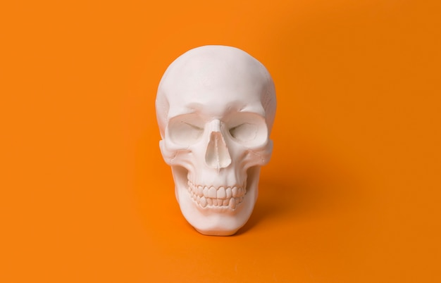 Human skull at the orange table with copy space