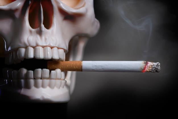 人間の頭蓋骨は黒い背景でタバコを吸います。歯にたばこを燃やすプラスチック製の人間の頭蓋骨モデル。