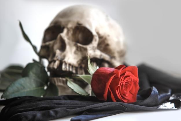 赤いバラの人間の頭蓋骨