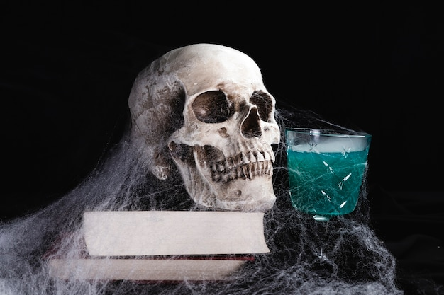 Human skull with drink and spiderweb
