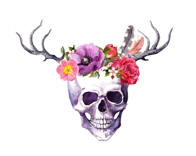 Human skull with horns of deer, flowers and feathers in vintage boho style. watercolor for death day