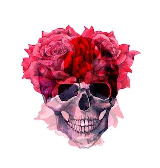 赤いバラの花を持つ人間の頭蓋骨。