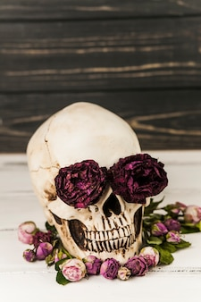 Human skull with roses in eye sockets