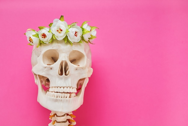 Human skull with white flowers wreath on bright pink background. copy space. dia de muertos day.