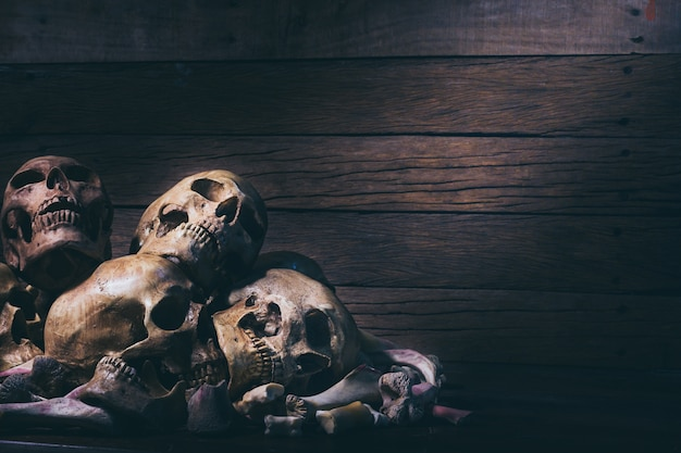 Human skulls on old wood table background.