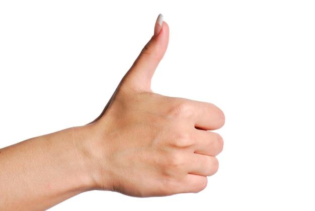 人間の親指