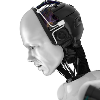 Humanoid robotic face