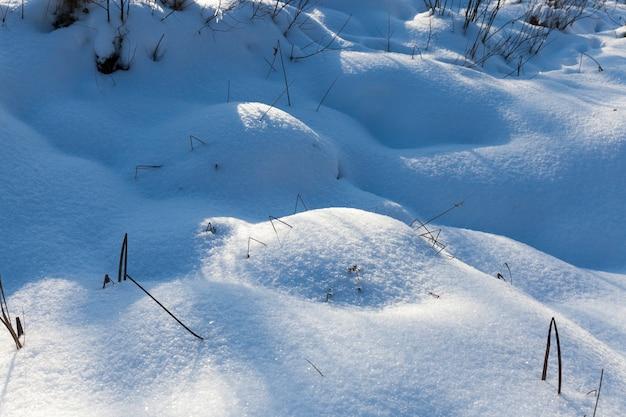 沼地のハンモックは降雪後に漂流し、寒い冬の季節に吹雪が発生します