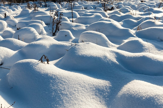 Hummocks in the swamp large drifts after snowfalls and blizzards