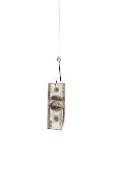 Сто долларов на рыболовный крючок на белом фоне