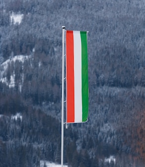 Hungarian flag on big pole against fir forest covered by snow