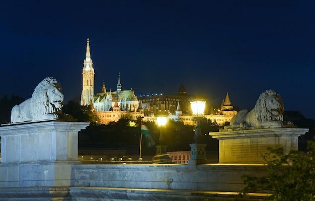 Hungarian landmark, budapest chain bridge night view. long exposure.