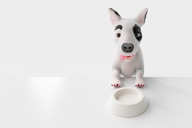 Голодная собака сидит и ждет еды. который имеет пустую кормушку впереди.