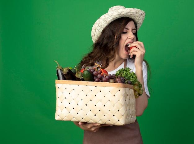 ガーデニング帽子をかぶった制服を着た空腹の若い女性の庭師は、野菜のバスケットを保持し、緑の壁に隔離されたトマトを噛むふりをします