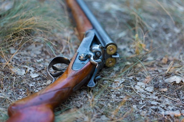 Hunting rifle on grass. the beginning of the hunting season is open. for pheasant and birds.