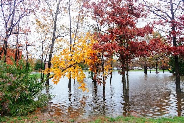 허리케인 홍수 및 바람 피해