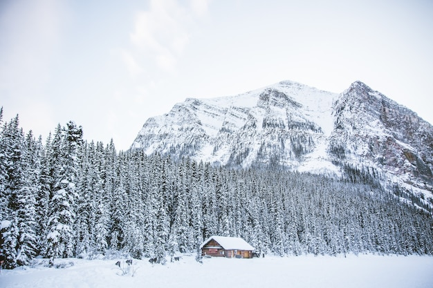 A hut in a snowy field with rocky mountains and a forest