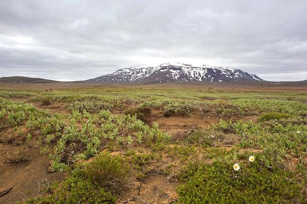 Hvitarnesの近くのアイスランドの自然風景