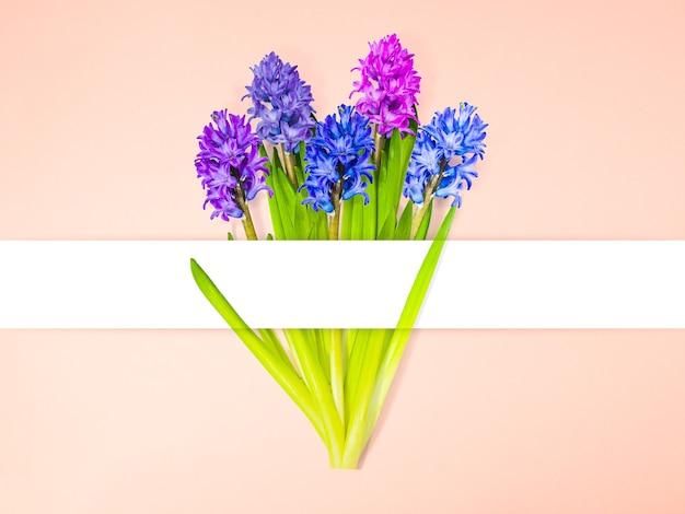 복사 공간, 꽃 배경, 해피 발렌타인 데이, 어머니의 날, 평면 평신도, 평면도와 분홍색 배경에 흰색 줄무늬가있는 히아신스 꽃 꽃다발