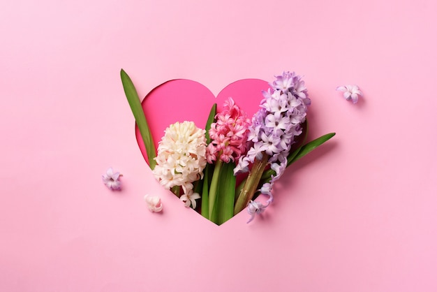 Hyacinth flowers in hole in heart shaped