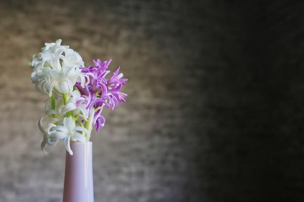 灰色の背景にピンクの花瓶のヒヤシンスの花。