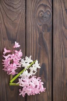 어두운 나무 표면에 히아신스 꽃