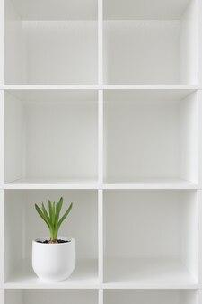 白い鍋にヒヤシンスの植物。ラックに花を咲かせます。インテリアの背景。