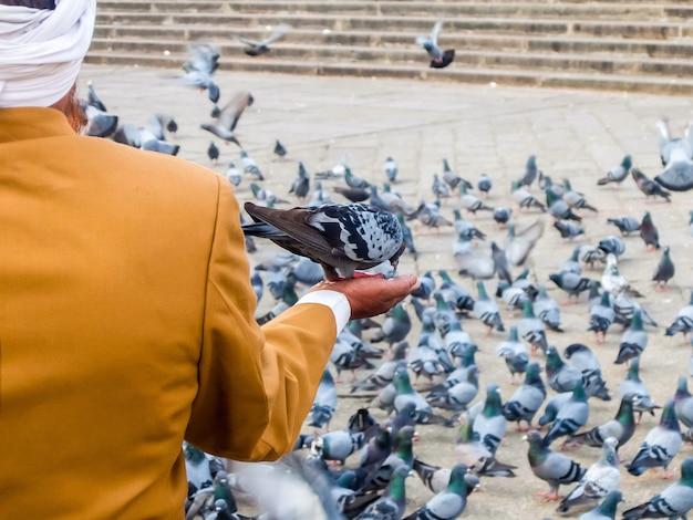 인도 하이데라바드의 유명한 기념물 메카 성원 앞의 인도 하이데라바드 비둘기