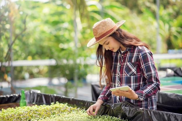 水耕栽培野菜畑。水耕野菜の栽培と分析を研究している美しいアジアの農家。有機野菜と健康食品を育てるというコンセプト。