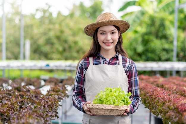 Hydroponics vegetable farm. happy young asian woman holding organic vegetable basket that she has planted herself.