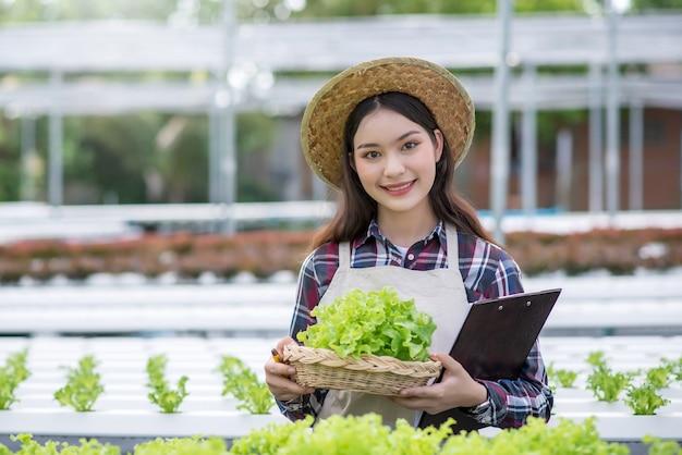 水耕栽培野菜畑。若いアジアの女性は彼女の水耕栽培農場から野菜を収穫する笑顔。有機野菜と健康食品を育てるというコンセプト。