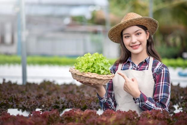 水耕栽培野菜畑。彼女の水耕栽培農場から野菜を収穫する若いアジアの女性の笑顔