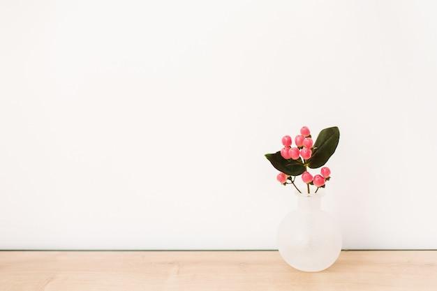 白い背景の上に花瓶にオトギリソウの花