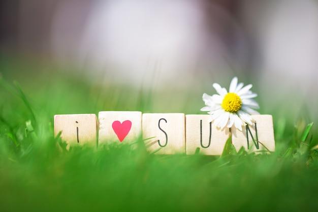 Деревянные кубики со словами i love sun в ярко-зеленой траве и белой маргаритке, летняя концепция красивой природы
