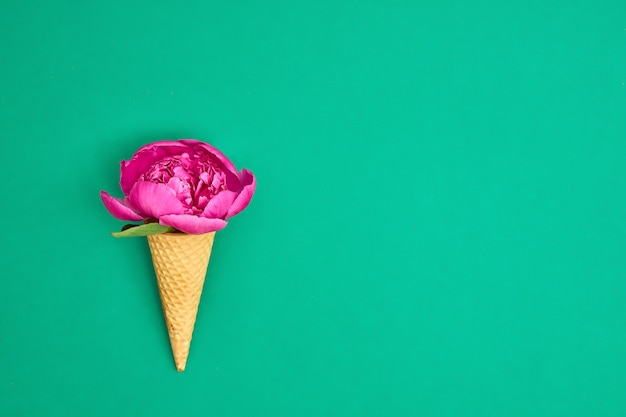 Ice cream cone with pink peony flower over green background.